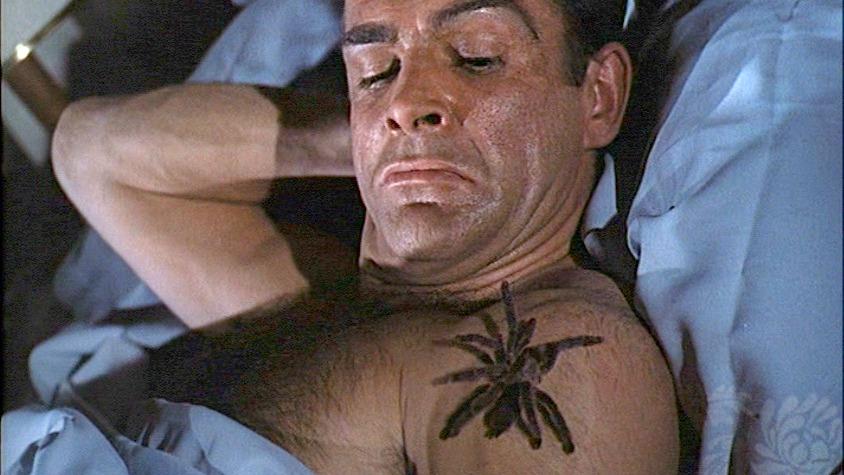 dr-no-spider